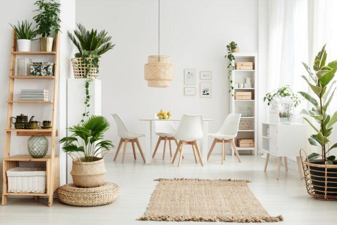 בואו לבדוק: כמה עיצוב הבית שלכם מחובר לטבע?