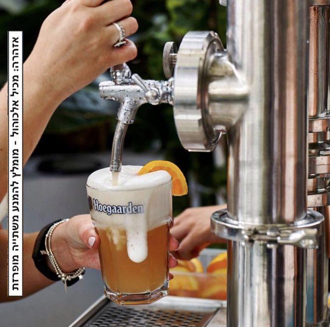 בירה למתחילים: המדריך המלא לבירות